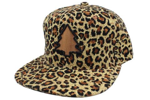 cheetah full